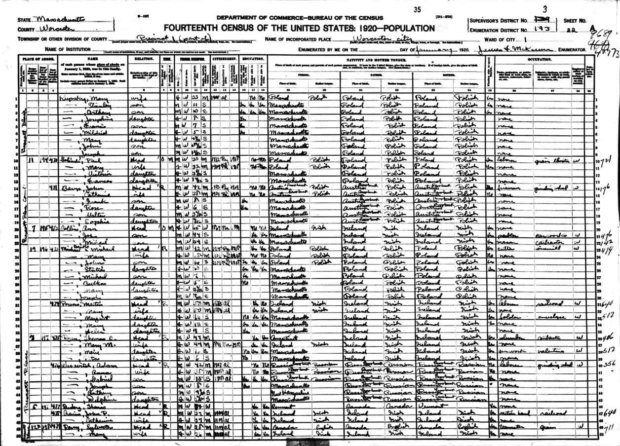 1920 Census Record for Michael Danko and Paul Golinski
