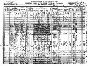 1910 US Federal Census Record for Mary Danko