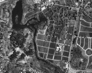 Aerial View of Notre Dame Cemetery in Worcester, Massachusetts