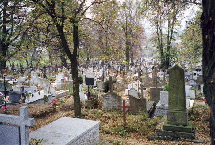 Dubiecko Cemetery
