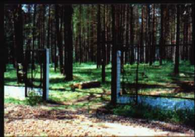 Miednoye Forest Burial Site near Tver