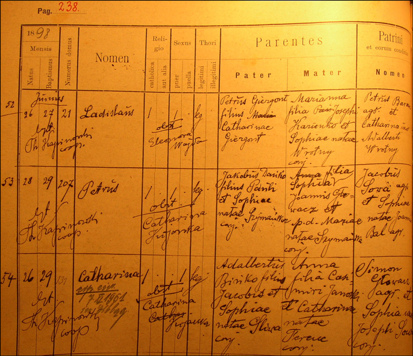 Birth and Baptismal Record for Piotr Danko
