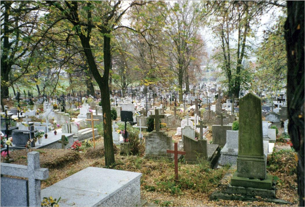 Dubiecko Cemetery 1
