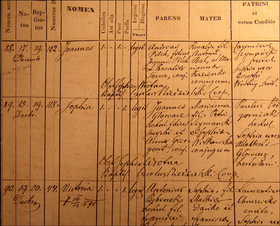 The Birth and Baptismal Record for Zofia Glowacz