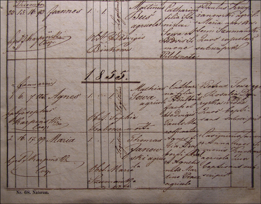 Birth and Baptismal Record for Agnieszka Sowa