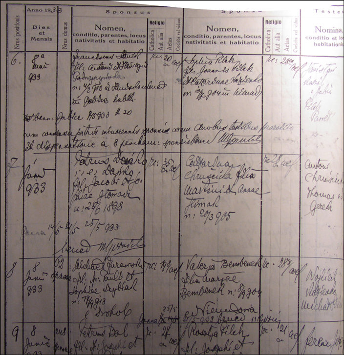 The Marriage Record of Piotr Dańko and Katarzyna Chruścicka