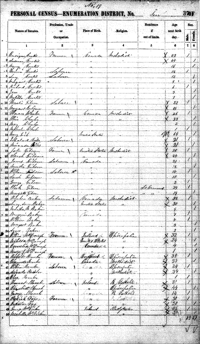 The 1851 Census Record for John Gibson and Family