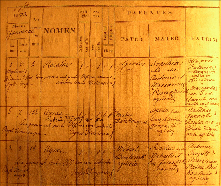 Birth and Baptismal Record for Agnieszka Danko