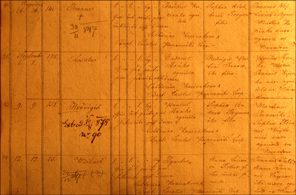 Birth and Baptismal Record for Jadwiga Danko