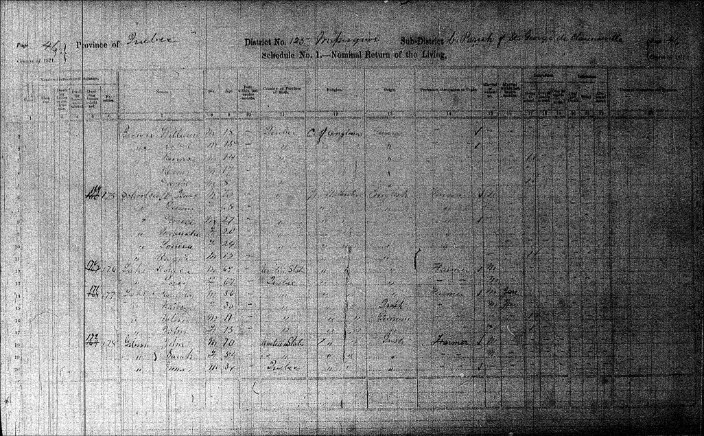 Gibson Families in the 1871 Census - Page 46