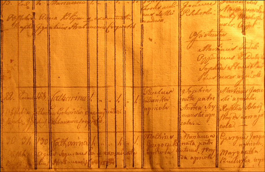 Birth and Baptismal Record of Katarzyna Danko