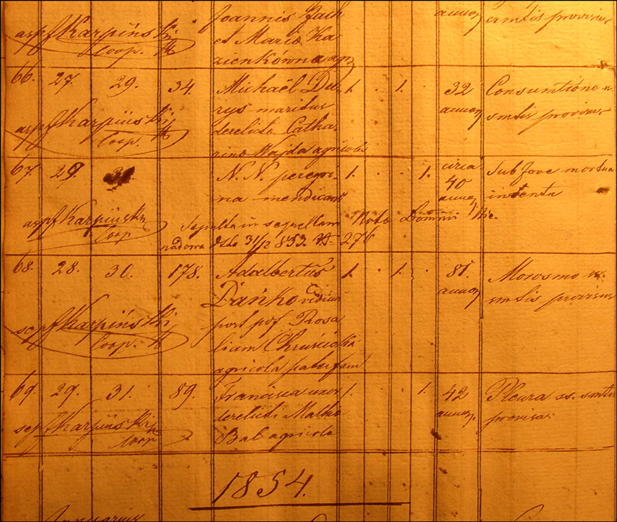 Death Record of Wojciech Danko