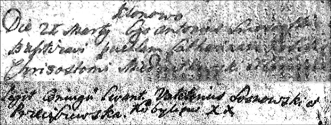 Baptismal Record of Katarzyna Niedzialkowska - 1734