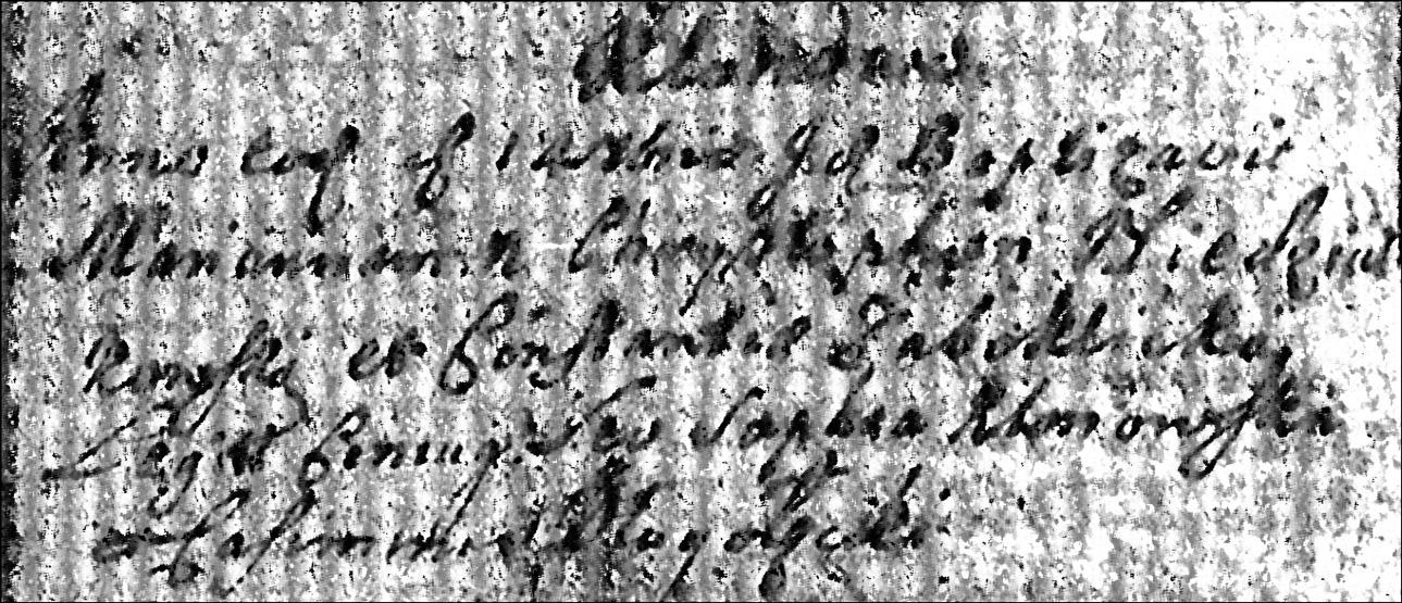 The Baptismal Record of Marianna Niedziałkowski - 1725