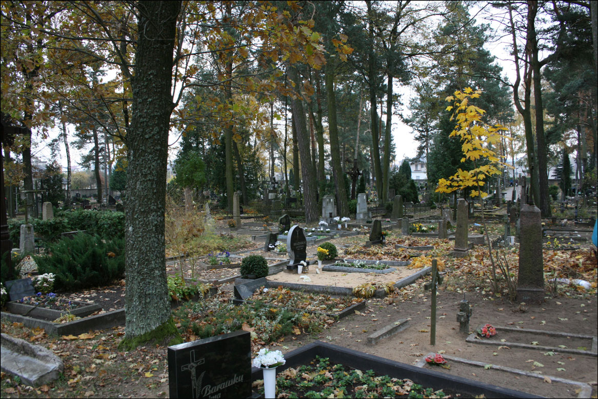 Overall View of Cemetery in Alytaus Lithuania