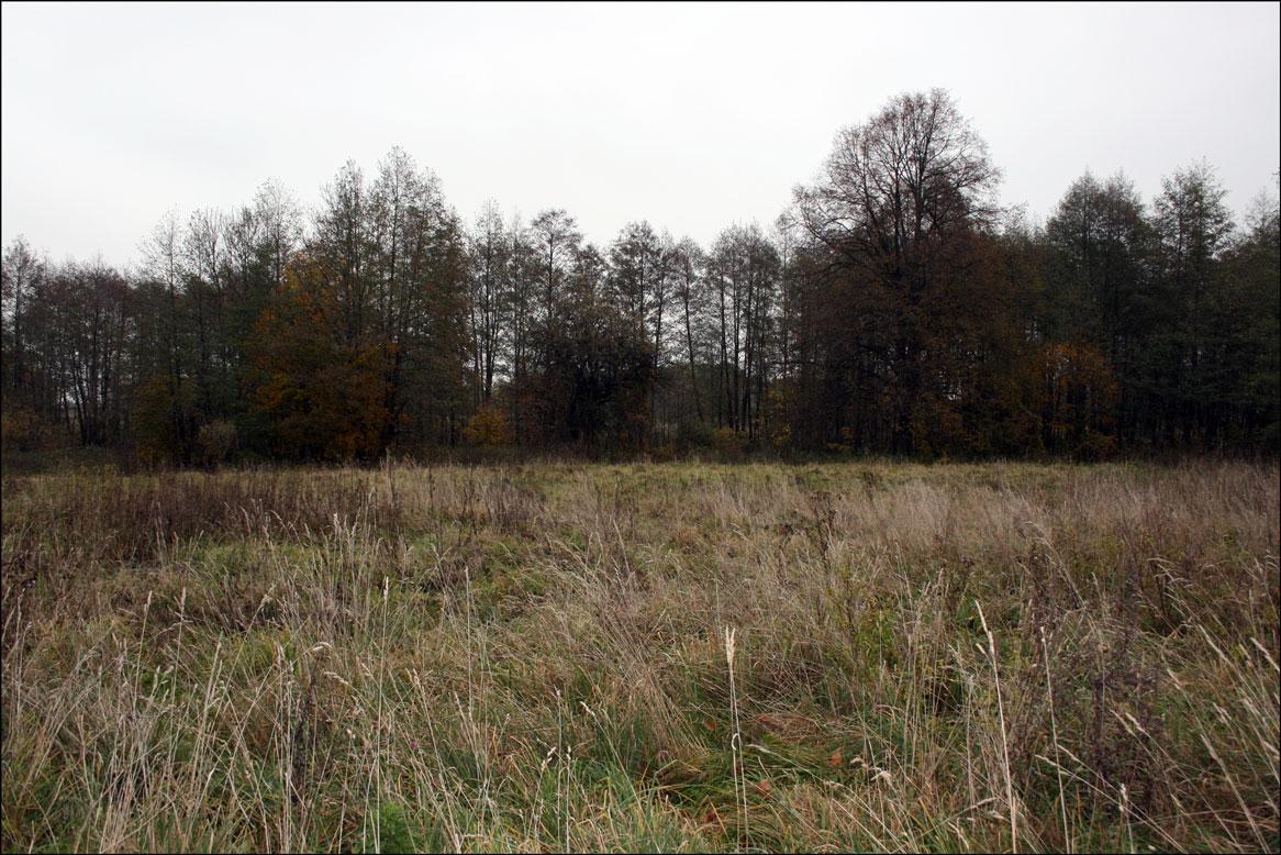 Chmielewski Fields