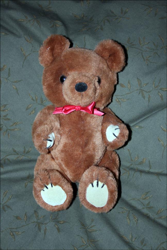 Dakin Bear