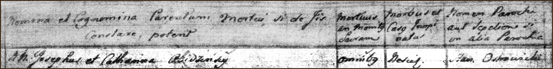 Right Side of the Death and Burial Record of Agnieszka Obidzinska - 1782