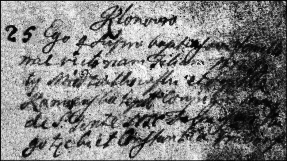 The Birth and Baptismal Record of Wiktoria Niedzialkowska - 1757