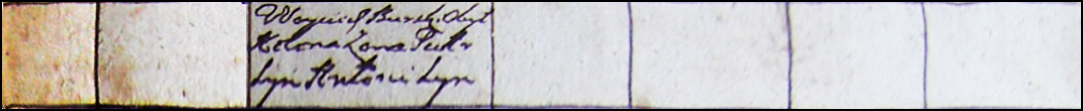 Wojciech Burski in the 1785 Gzy parish census