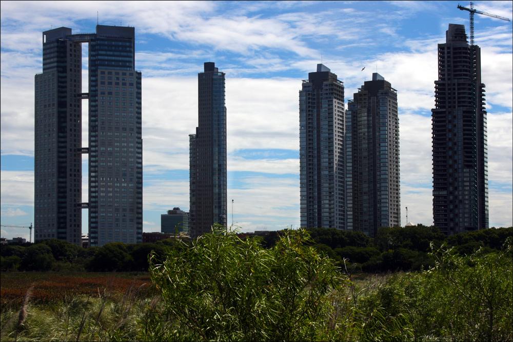 High-Rise Construction near Reserva Ecológica Costanera Sur