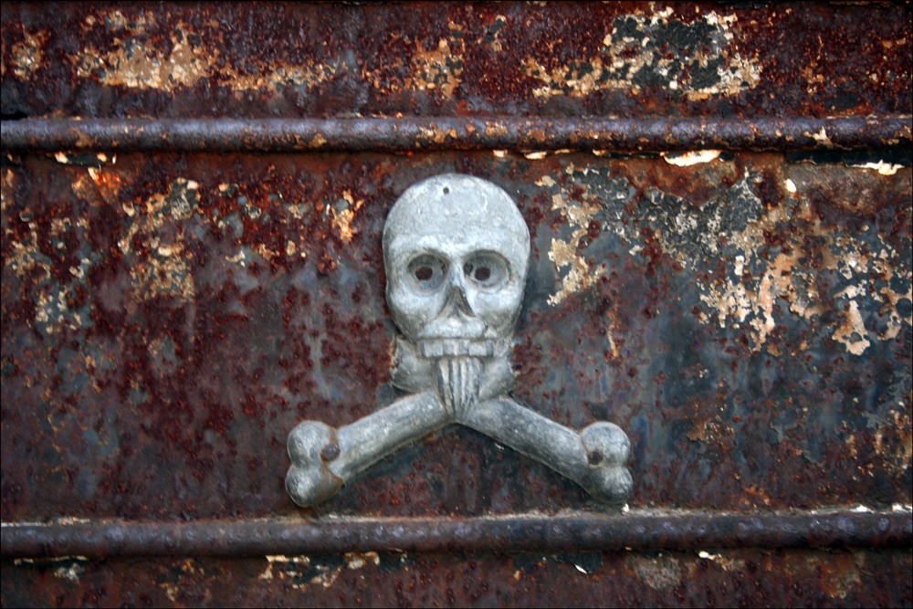 Skull on the Tomb of Doctor Alexo Castex