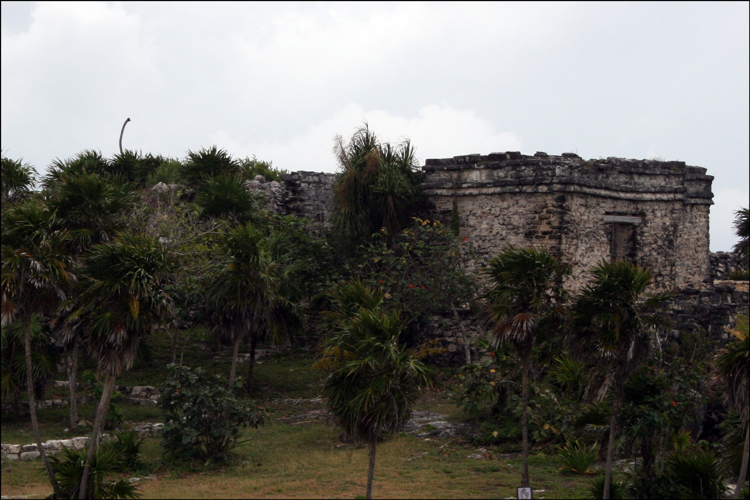 The House of the Cenote