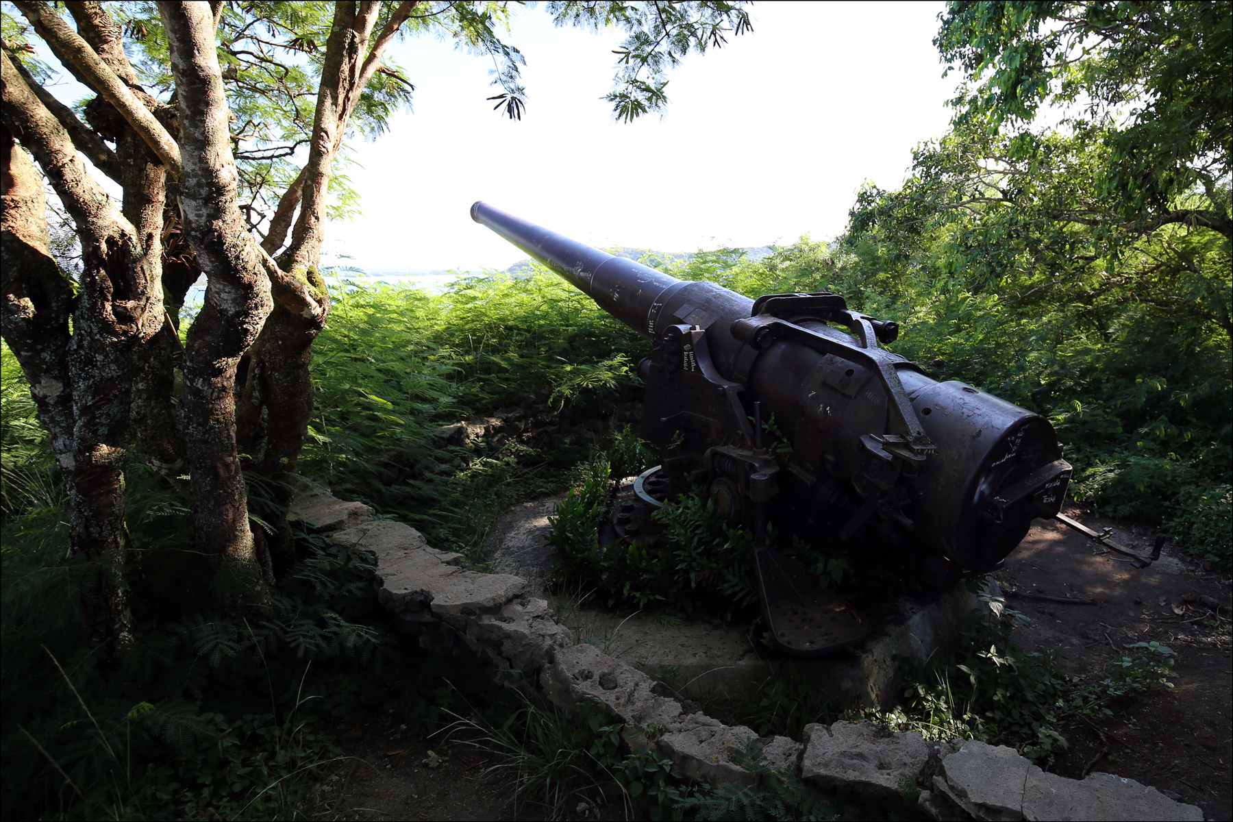 Cannon on Mont Poopooureroa - 1