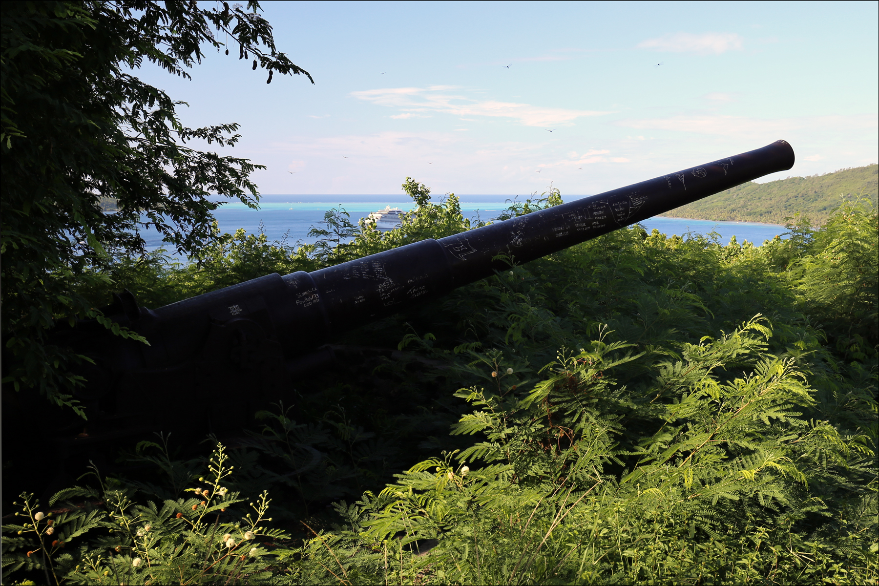 Cannon on Mont Poopooureroa - 2