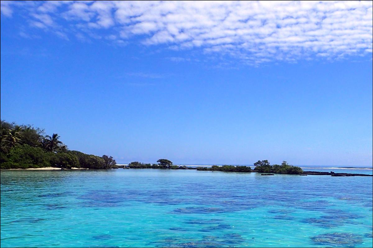 Moorea Snorkeling Site