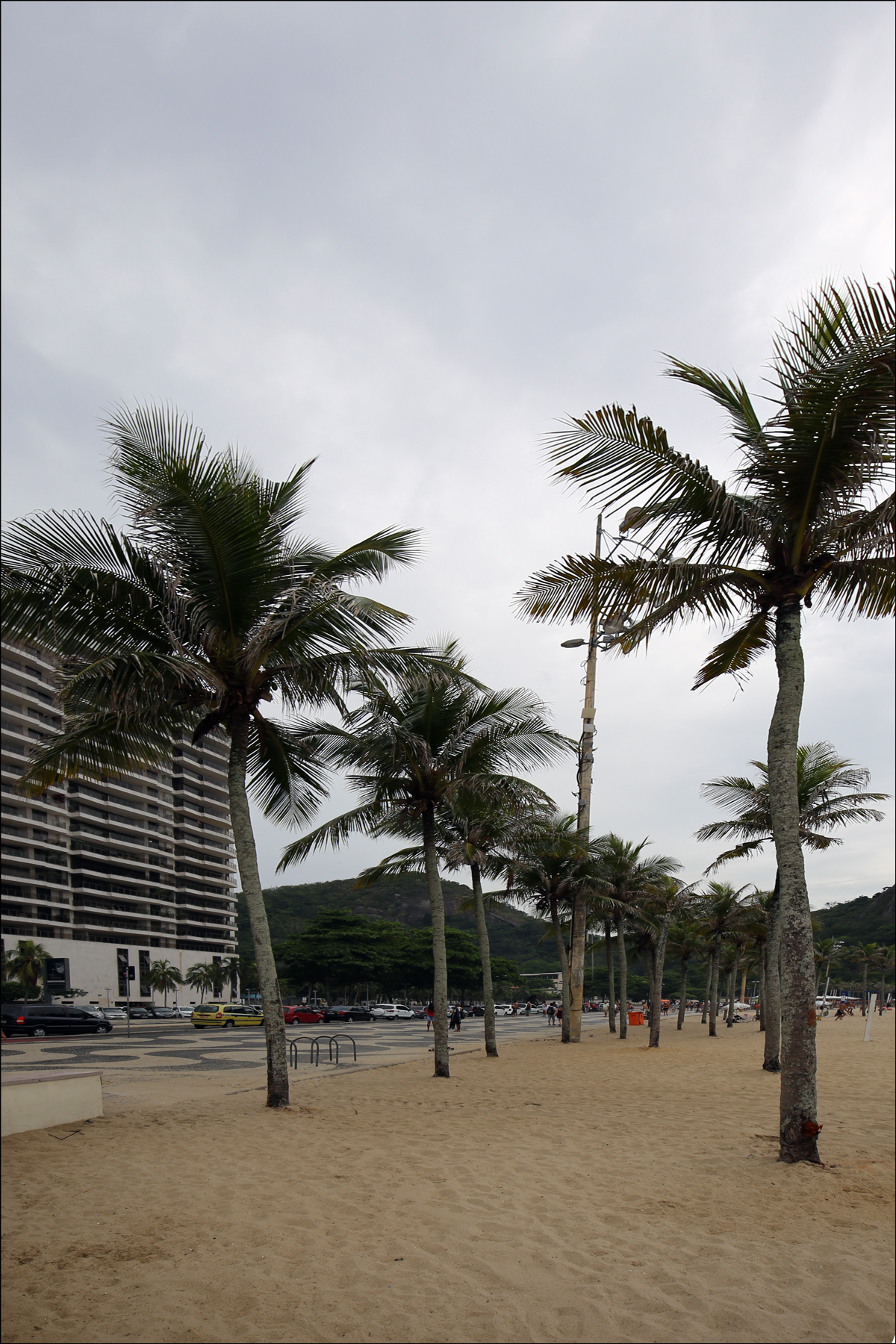 Palms at Copacabana Beach